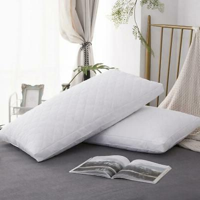Standard Size Feather Goose Pillows Bedding