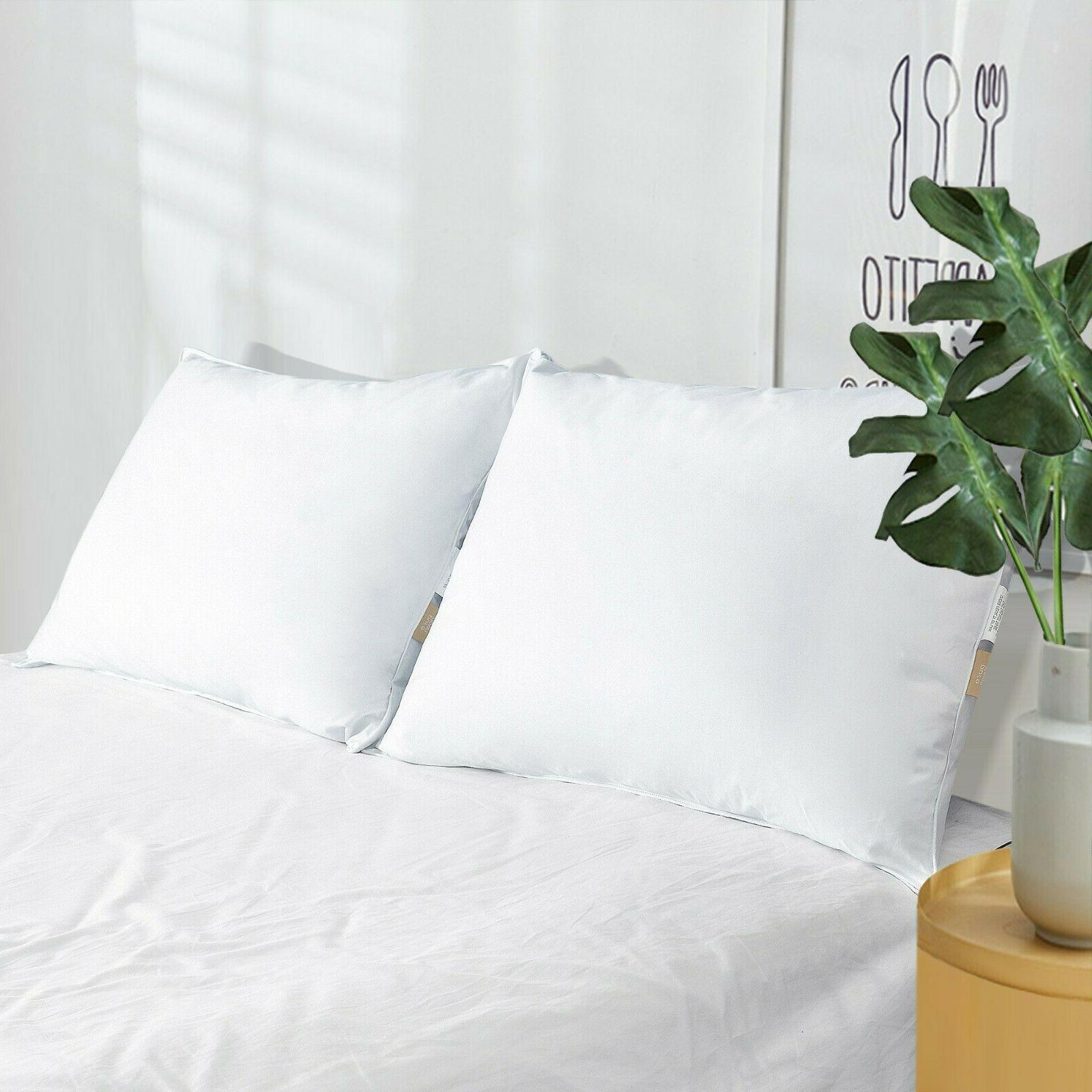 Feather Gray Bed 2 Pillows Queen King Size