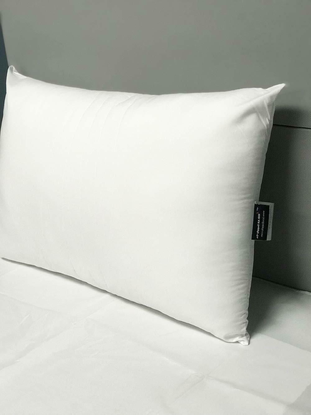 Huge Pillows Giant Large Bed 2pk